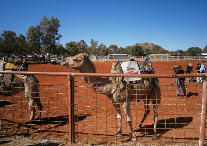 Australia Holiday Package and Group Tour 11